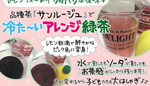 【デザイン紹介】手書きPOPでイチオシしたい品種茶「サンルージュ」を紹介♪